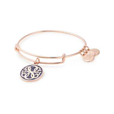 Alex & Ani Path of Life infusion Bangle, €42